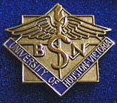 The pin presented to students at the UHV School of Nursing's first ever Pinning Ceremony was designed by the students and is full if symbolism. The students will wear the pins throughout their careers as a sign to their patients that they are highly trained care providers